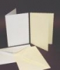 C6 Ivory Deckled Edge Card and Envelopes (Pack of 10)