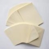5x7 Ivory Card and Envelopes (Pack of 10)